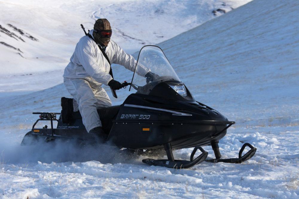 снегоход рысь запчасти цепь