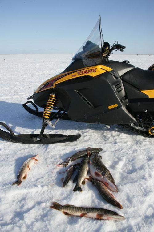 виды снегоходов для рыбалки